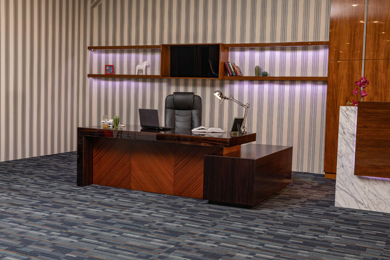 Director Office Desk and Chairs